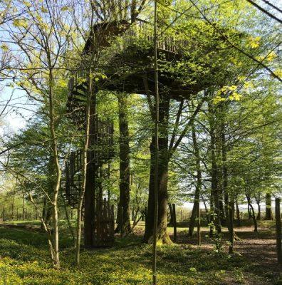 domaine-meauce-mariage-arbre